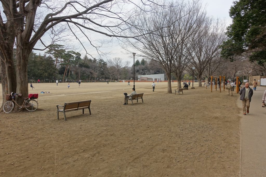 井の頭公園内グラウンド