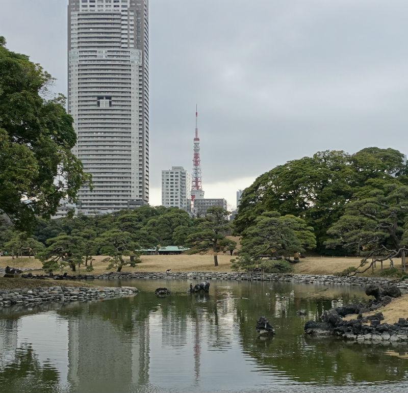 浜離宮からの東京タワー
