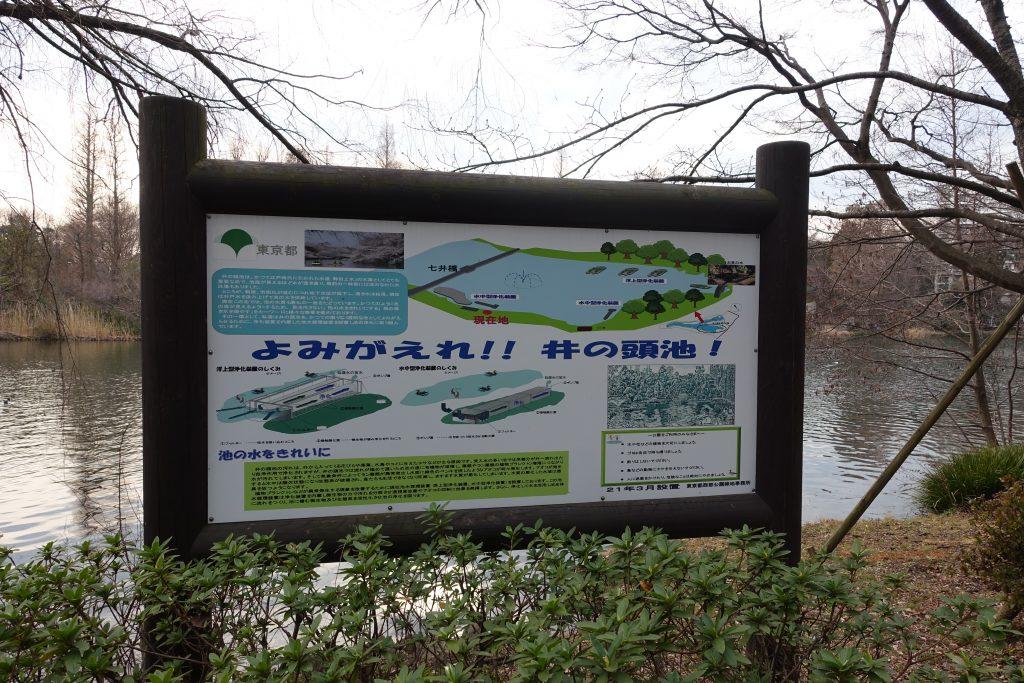 井の頭公園 水質改善の看板