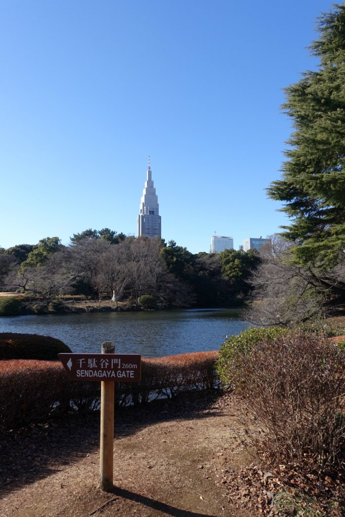 冬の新宿御苑 池越しのNTTビル