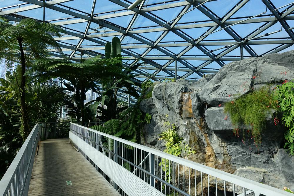 新宿御苑温室 空中廊下から