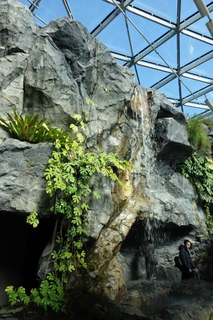 新宿御苑温室内の滝