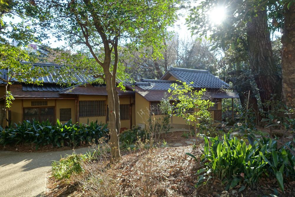 東京都庭園美術館 茶室裏 美術館側