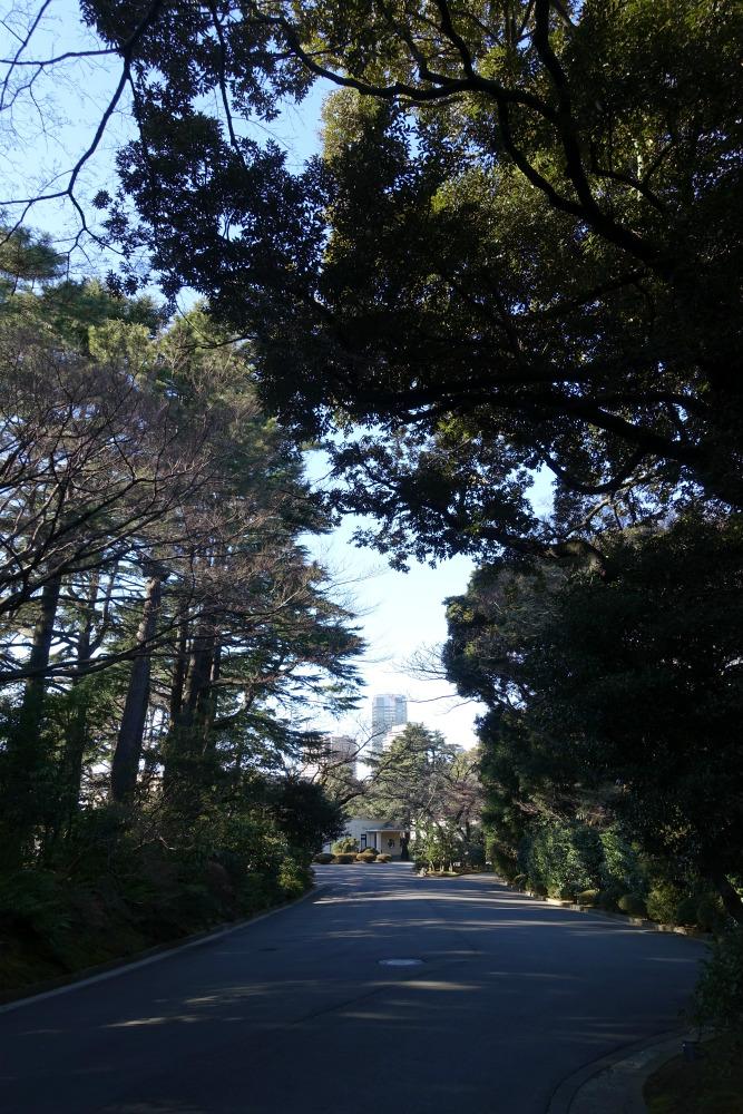 東京都庭園美術館 美術館入り口に至るまでの道