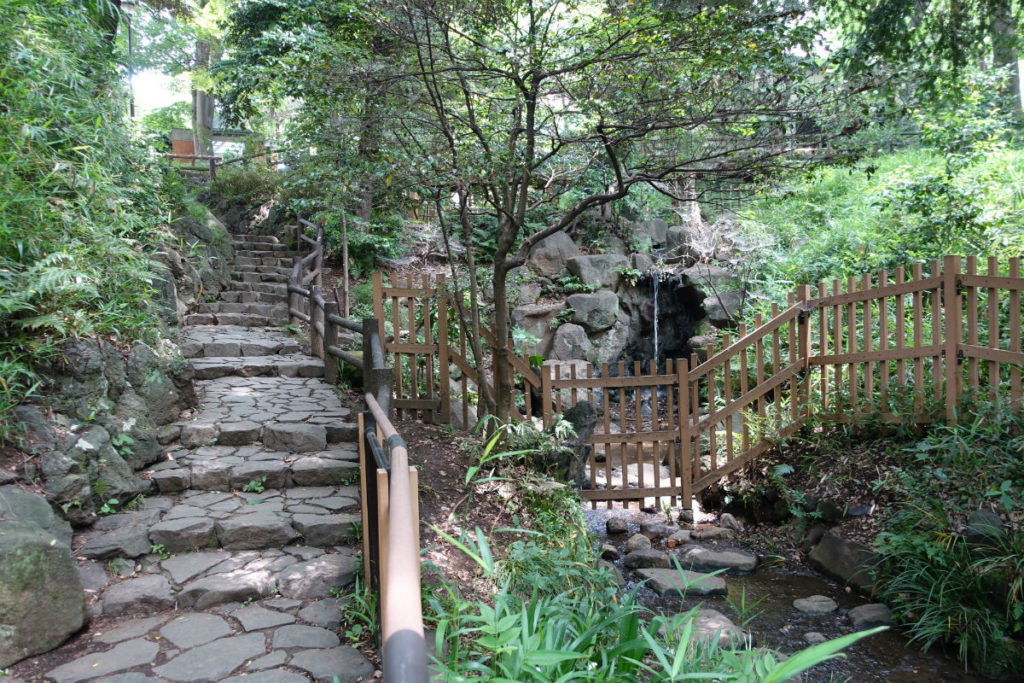 有栖川宮記念公園 北の渓流を登っていくと滝が