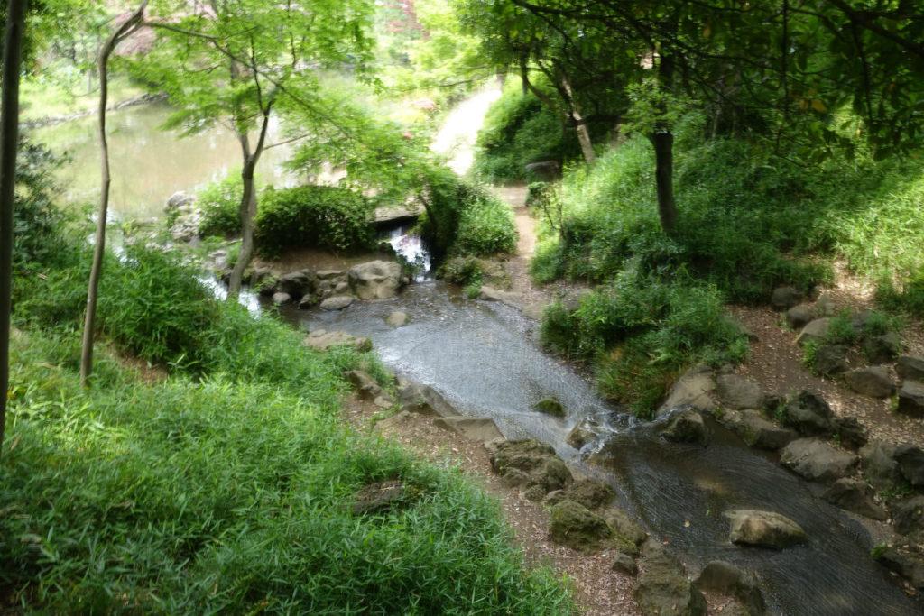 有栖川宮記念公園 南側の沢を橋の上から眺める