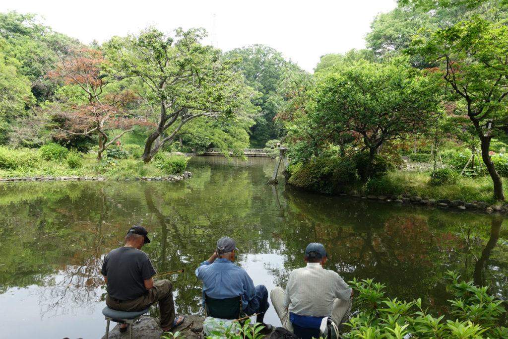 有栖川宮記念公園 池 釣りを楽しむ男性達 釣りOKなのか