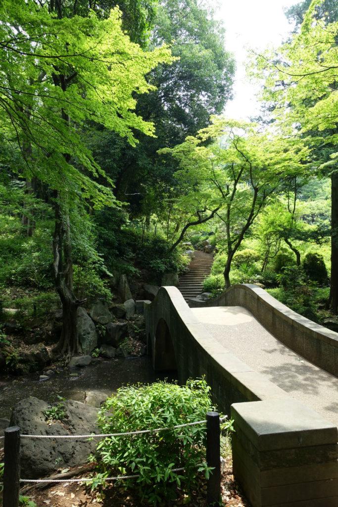 有栖川宮記念公園 渓流にかかる橋