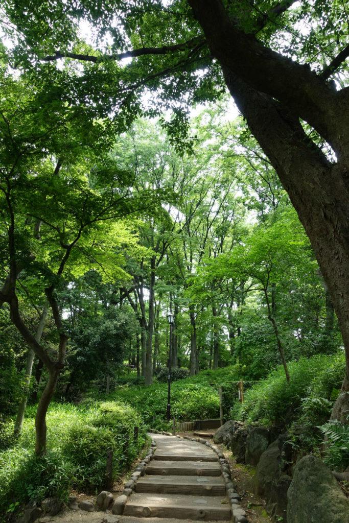 有栖川宮記念公園 公園内通路