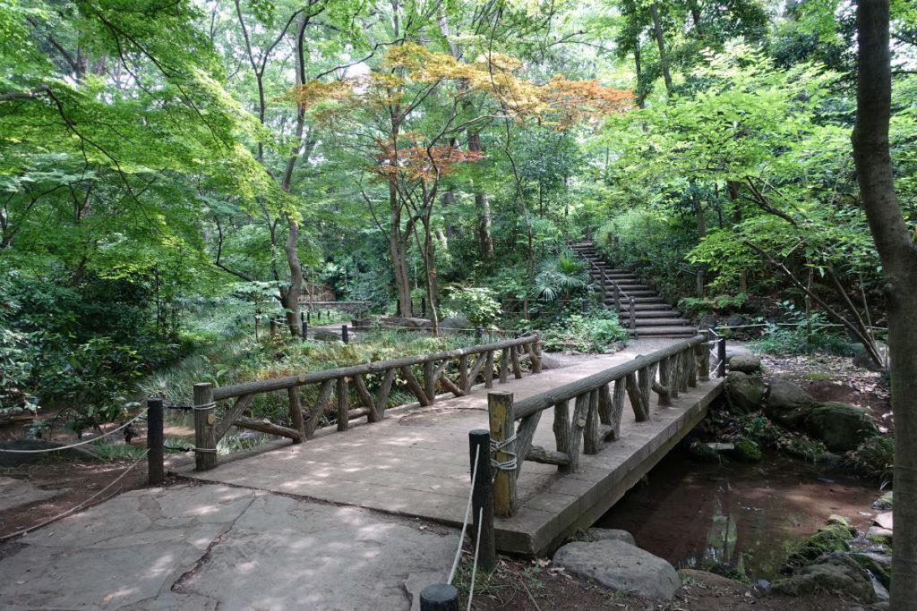 有栖川宮記念公園 沢と橋