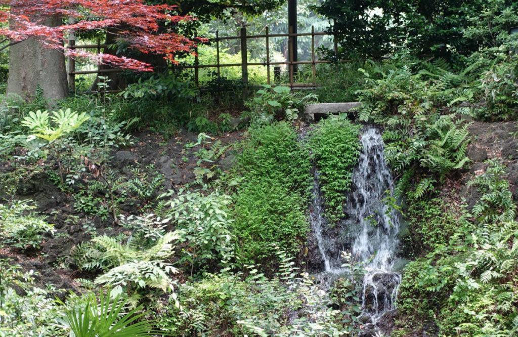 有栖川宮記念公園の南の滝