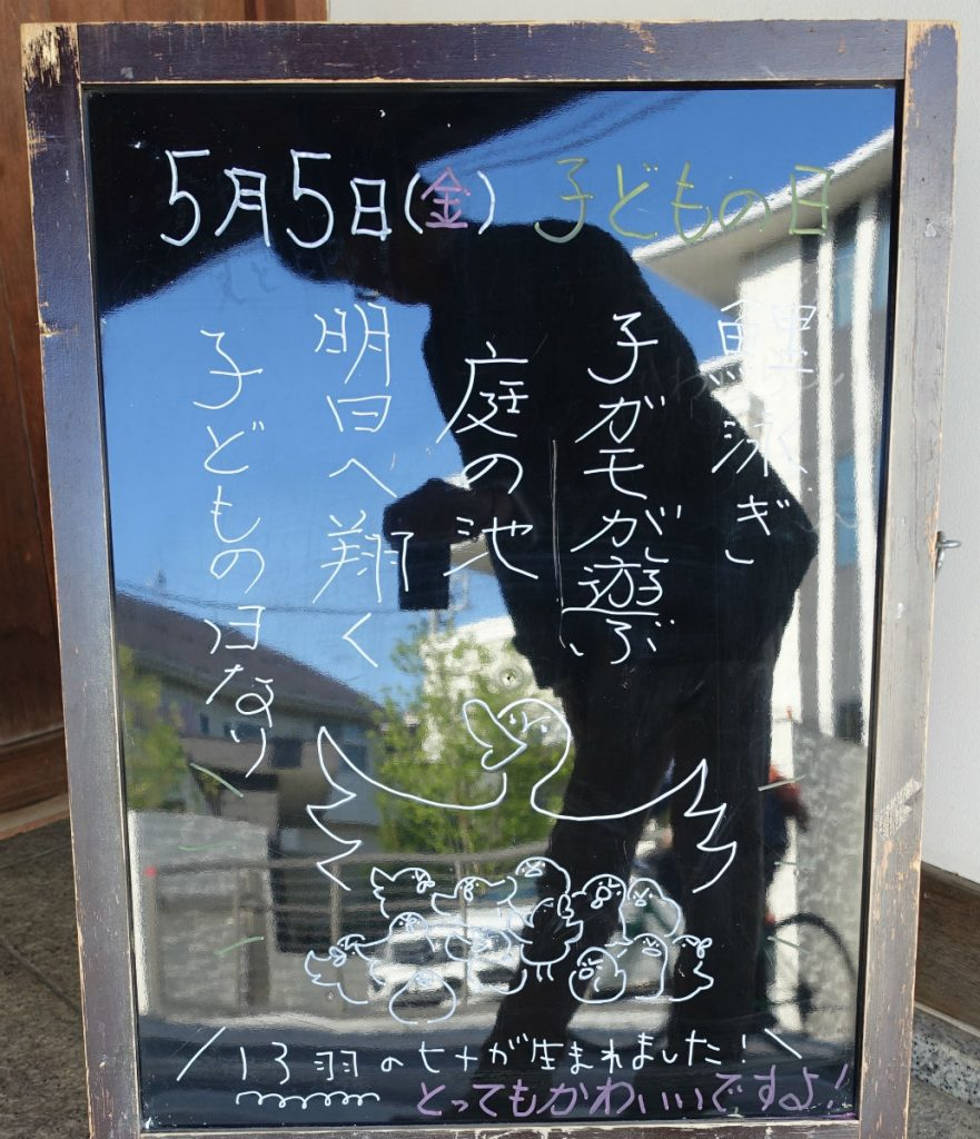東京 目白庭園 カモのお知らせ こどもの日