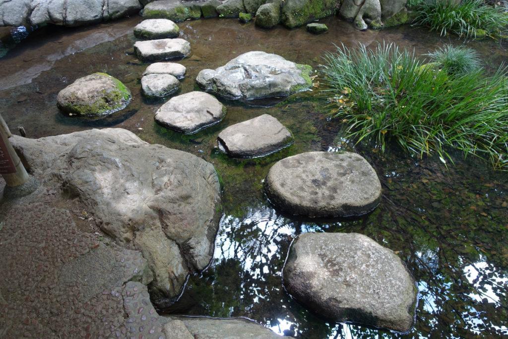 六義園 瀧見の茶屋奥の飛び石