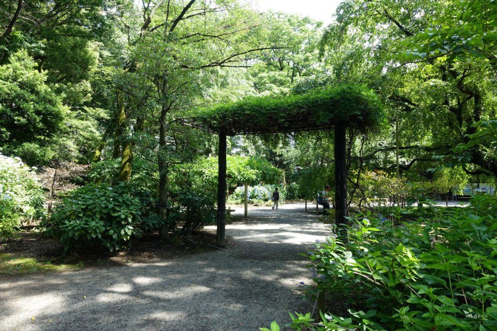 六義園 しだれ桜の裏の門