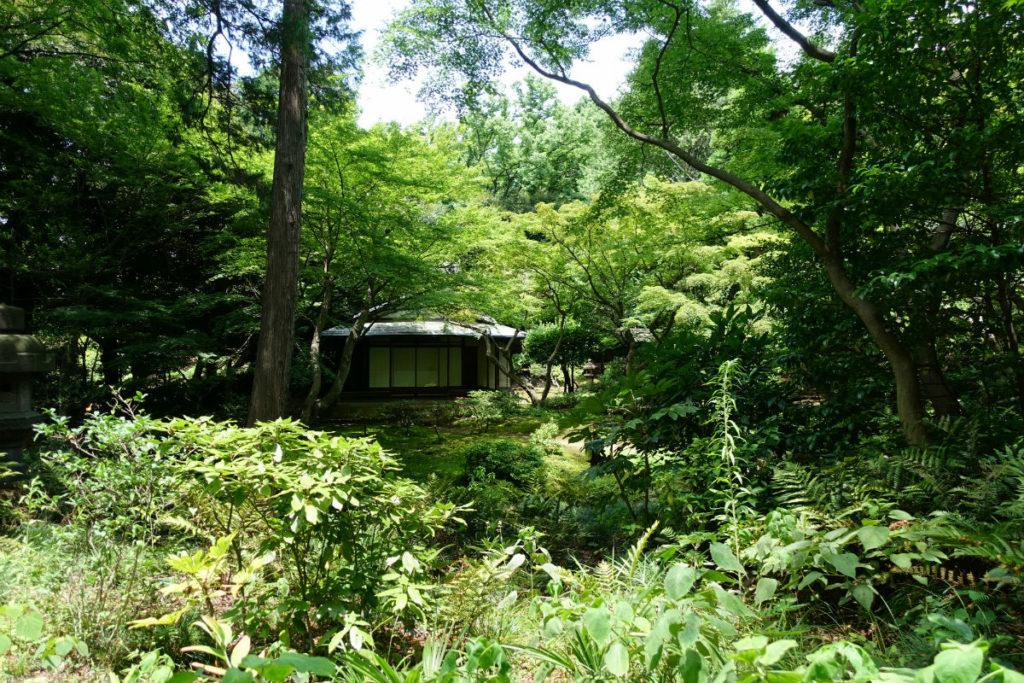旧古河庭園 茂の奥の茶室