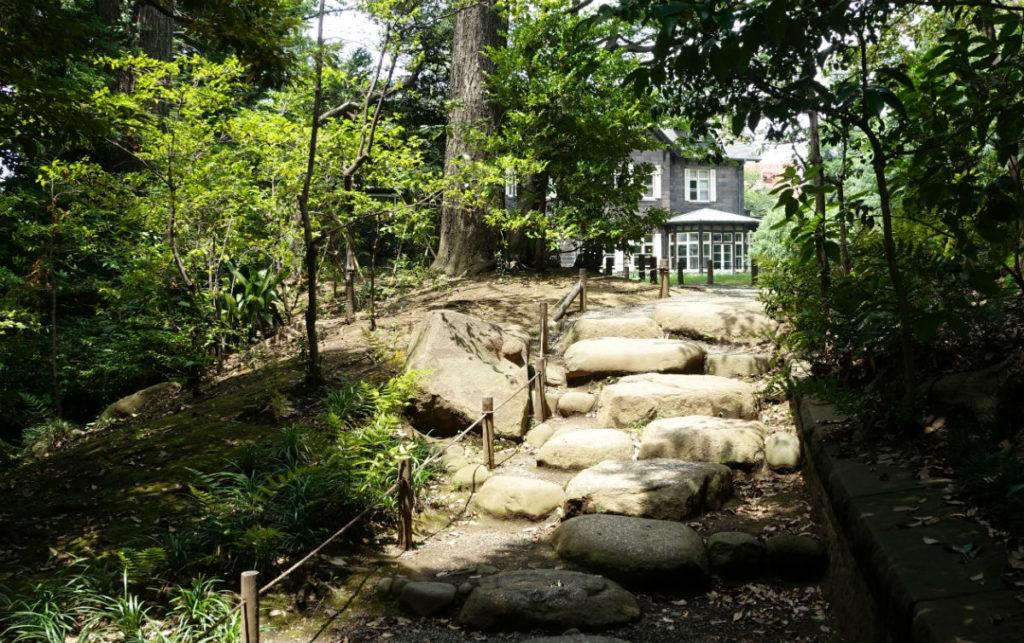 旧古河庭園 茶室から洋館への道
