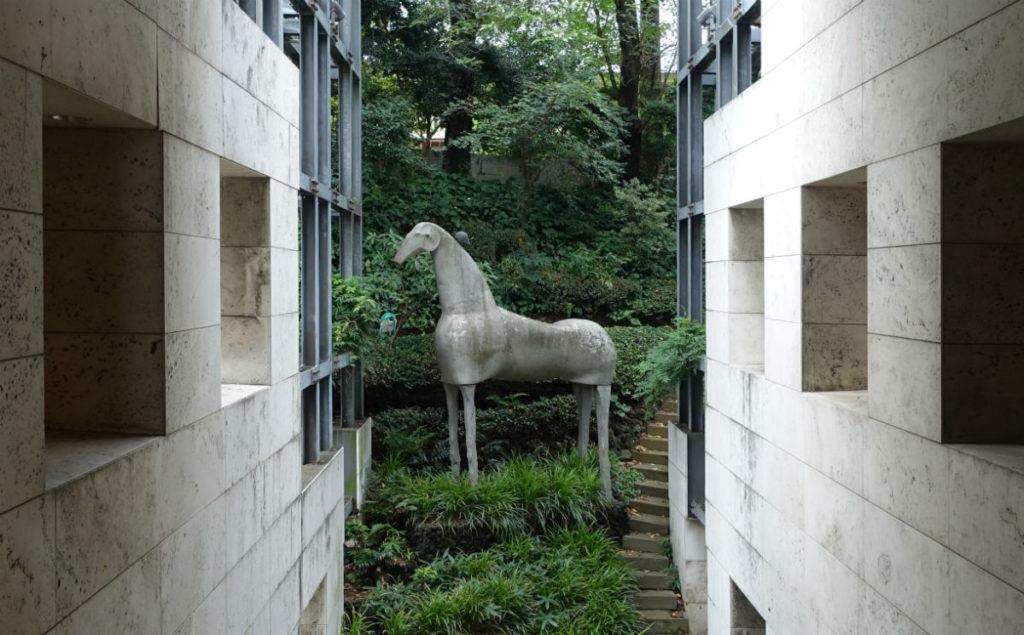 Shirakawa TDSの馬