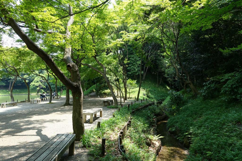 小石川後楽園 大泉水を左に流れを右に歩く