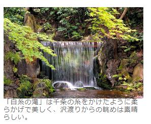 庭園に行こう 白糸の滝 小石川後楽園