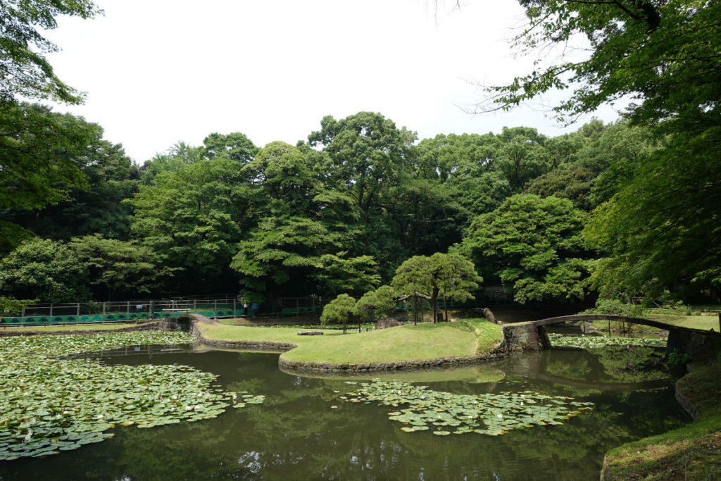 小石川後楽園 内庭の池 別方向から