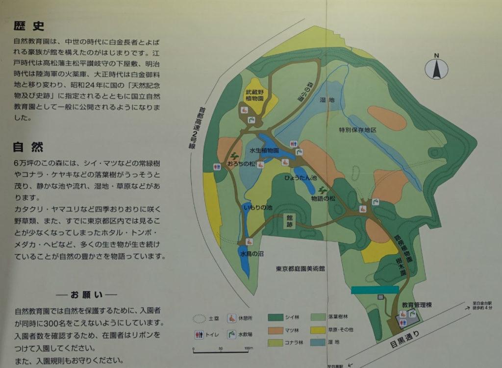 白金台自然教育園04 歴史と自然