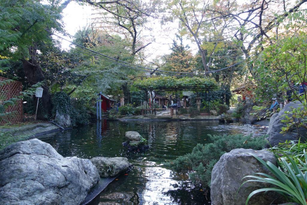 愛宕神社 境内の池