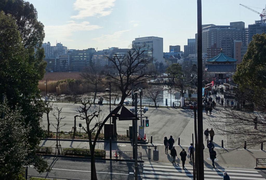 上野恩賜公園から不忍池を見下ろす