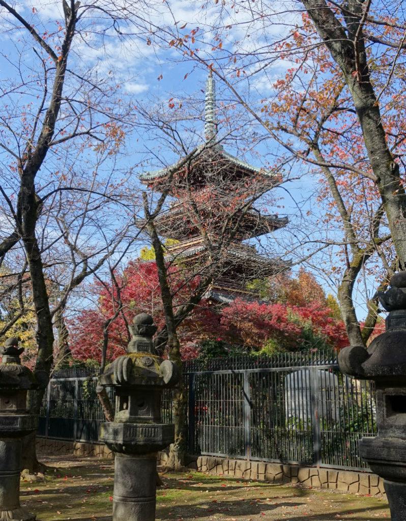 上野東照宮からみる五重塔
