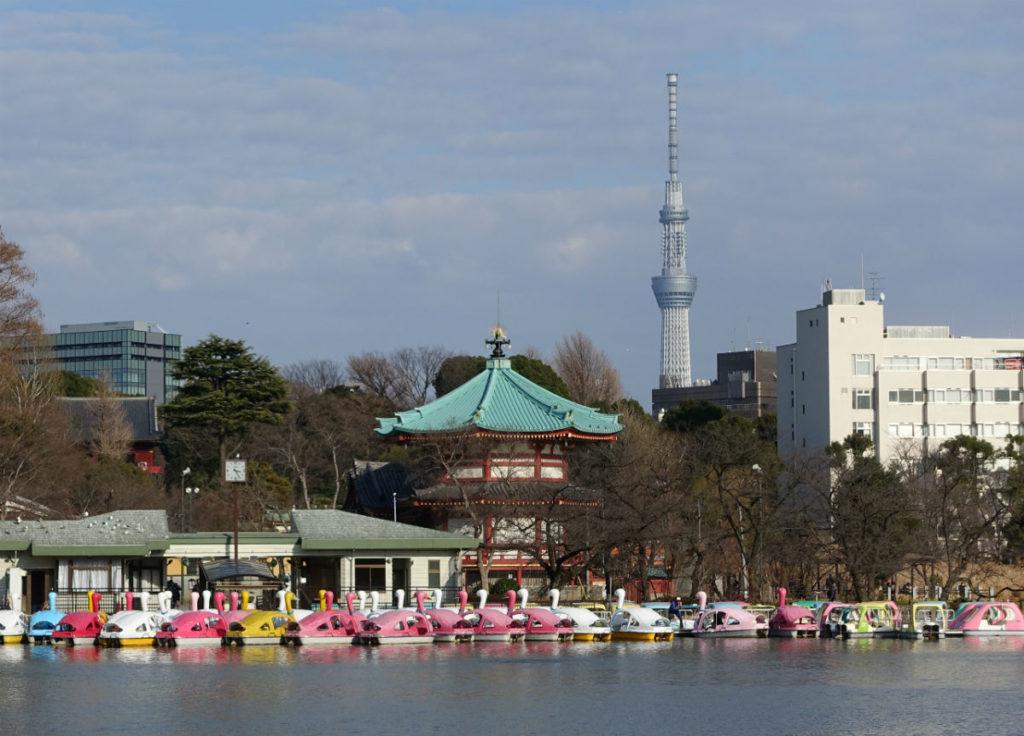 上野恩賜公園 不忍池西岸からスカイツリーと弁天堂