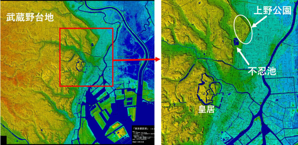 上野公園付近 地形