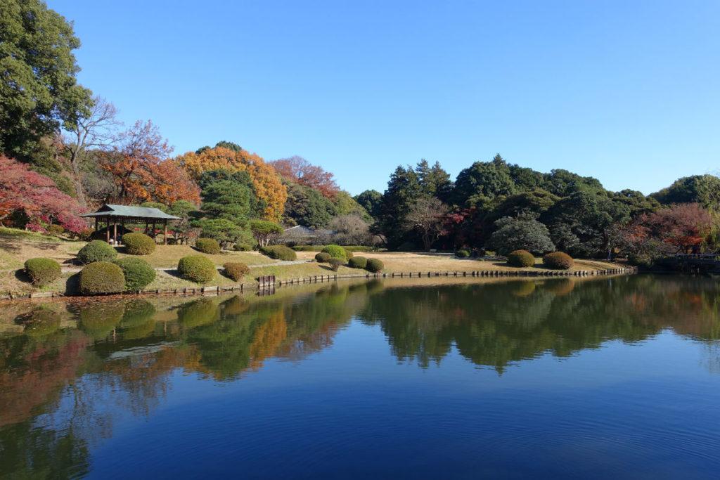新宿御苑秋 上の池