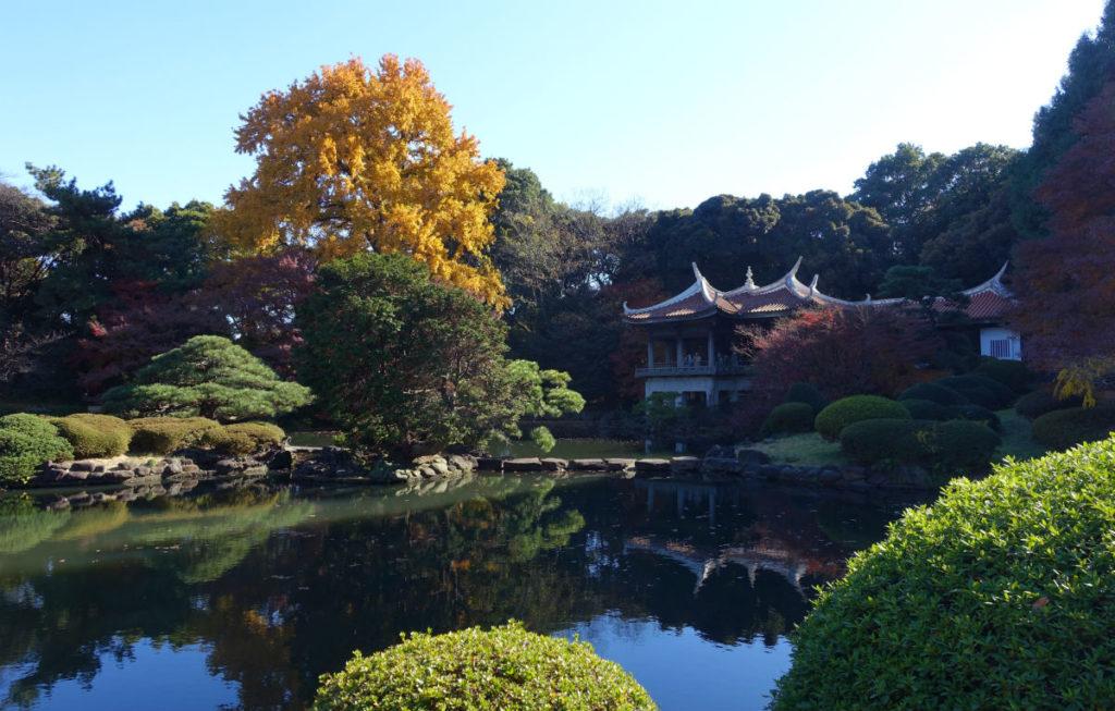 新宿御苑秋 旧御涼亭を池越しに北西から眺める