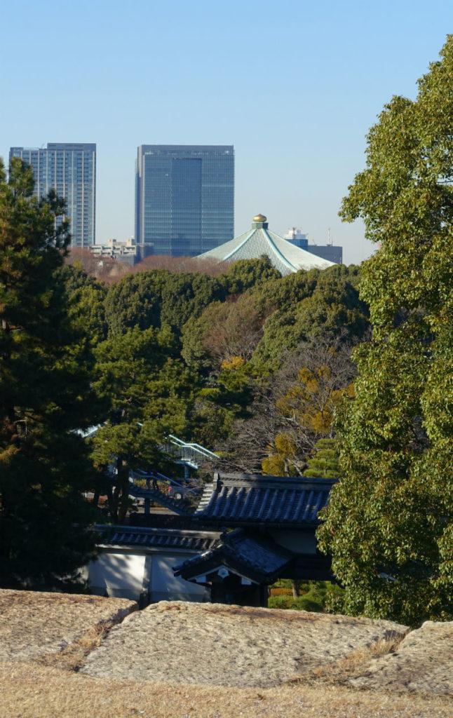 皇居東御苑 本丸天守台から武道館を眺める