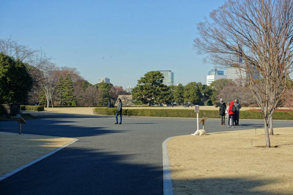 皇居東御苑 本丸 南から北を眺める
