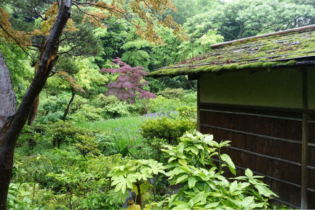 根津美術館 庭園 苔むした屋根