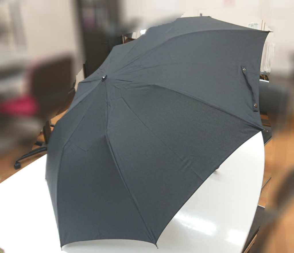折り畳み傘 開いてみたところ
