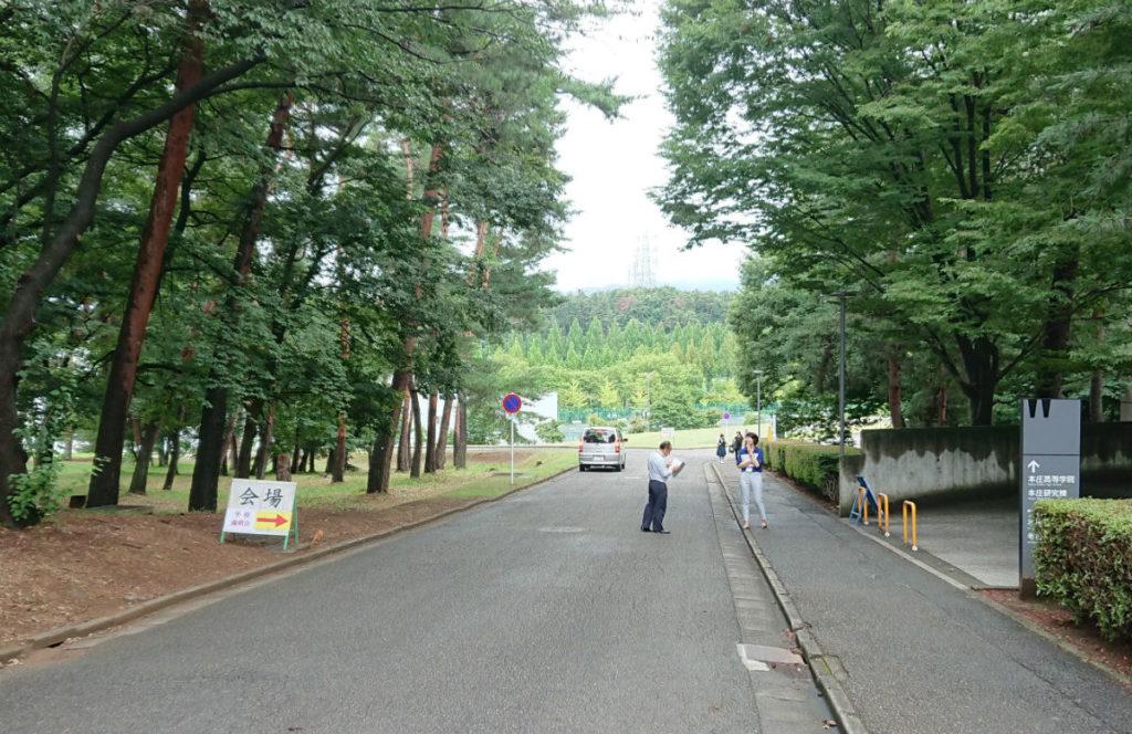 早稲田本庄高等学院 森の中