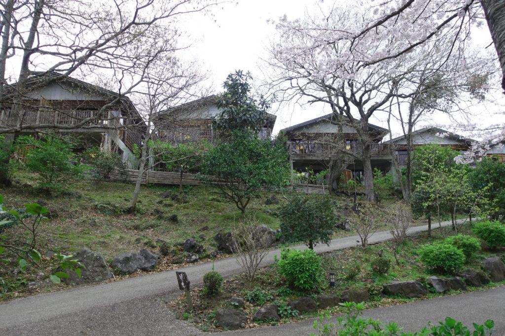八幡野温泉 きらの里 別邸山の音 庭側から見上げる