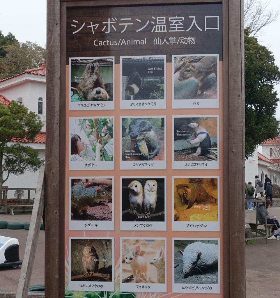 伊豆シャボテン動物公園 温室の動物案内板
