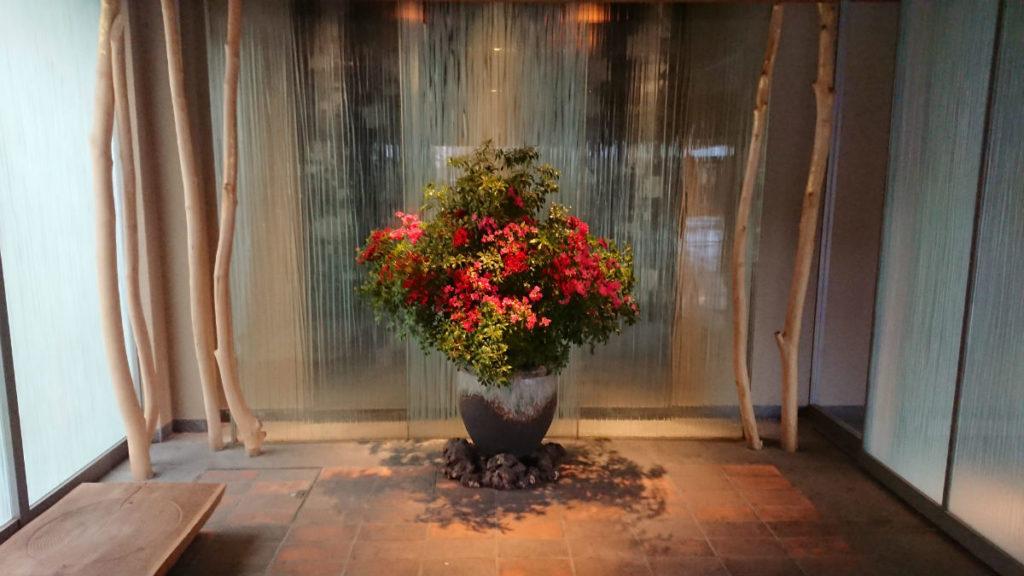 滝の家 玄関内の花