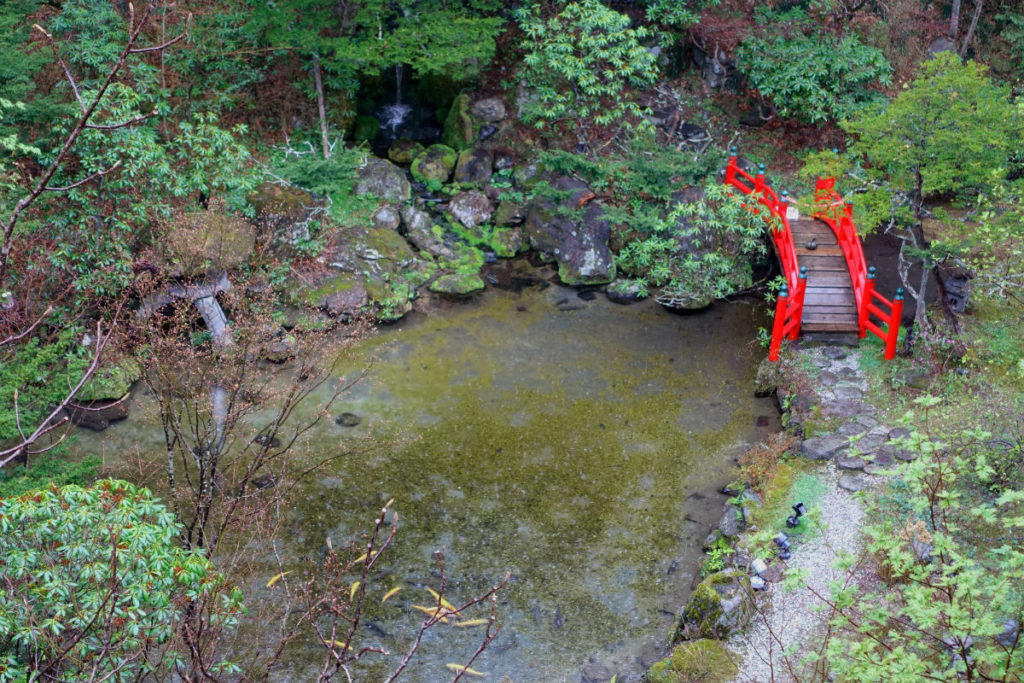 滝の家 客室から見下ろすお庭 池に鯉