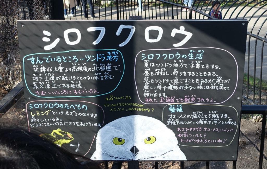 北海道旭山動物園 シロフクロウ舎 説明板